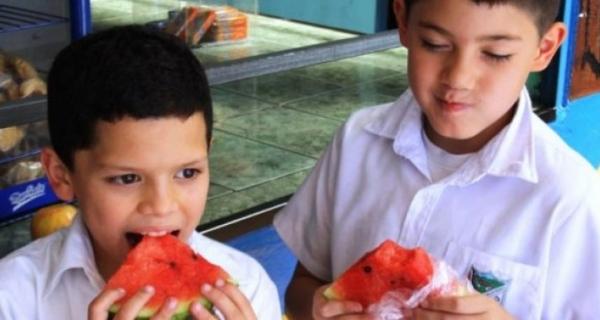 Quejas y peticiones acerca del Programa de Alimentación Escolar –PAE-